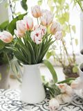 Bouquet of fresh tulips in jug royalty free stock photos