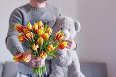 A bouquet of fresh tulips in men`s hands and a teddy bear as a gift. Surprise for a woman from a man. A man in a sweater with a royalty free stock image