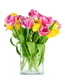 Bouquet of fresh tulips in vase isolated Stock Photography