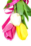 Bouquet of fresh tulips on white background. royalty free stock photos