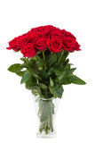 Bouquet of fresh valentine red roses isolated Royalty Free Stock Image