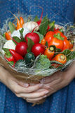 Bouquet of fresh vegetables in woman`s hands. Saint-Petersburg, Russia - August 29, 2016: a big unusual bouquet of fresh edible vegetables (garlic, carrots Royalty Free Stock Photography