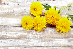 Bouquet of fresh yellow flowers on wooden background Royalty Free Stock Photo