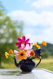 Bouquet garden flowers Stock Photo
