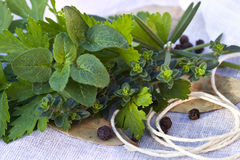 Bouquet Garni Royalty Free Stock Images