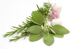 Bouquet Garni Royalty Free Stock Image