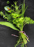 Bouquet garni of fresh herbs Royalty Free Stock Photo