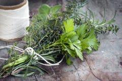 Bouquet Garni Fresh Herbs. Bouquet garni of fresh herbs, tied with twine.  Rosemary, thyme, oregano, parsley Stock Image