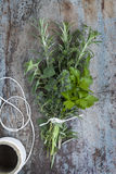 Bouquet Garni Fresh Herbs. Bouquet garni of fresh herbs, tied with twine.  Rosemary, thyme, oregano, parsley Royalty Free Stock Photo