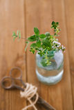 Bouquet garni - herbs  in a bottle Royalty Free Stock Images