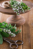 Bouquet garni - herbs  tied by string Royalty Free Stock Photo