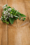 Bouquet garni - herbs  tied by string Royalty Free Stock Image