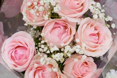 Bouquet of gentle pink roses. Background Royalty Free Stock Photography