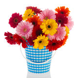 Bouquet Gerber flowers Royalty Free Stock Photography