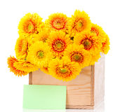 Bouquet of gerber flowers in the box and a greeting card Royalty Free Stock Photos