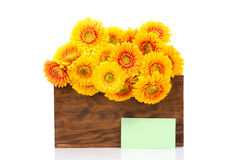 Bouquet of gerber flowers in the box and a greeting card Stock Image