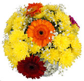 Bouquet of gerbera flowers and chrysanthemums Royalty Free Stock Images