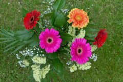 Bouquet From Gerbera Flowers Royalty Free Stock Images