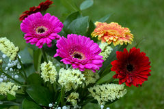 Bouquet From Gerbera Flowers Stock Image