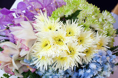 Bouquet of gerbera and flowers Royalty Free Stock Photos