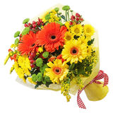 Bouquet from gerbera flowers isolated on white background. Royalty Free Stock Photo