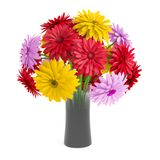 Bouquet of gerbera flowers planted white ceramic pot. Isolated on white background. 3D Rendering, Illustration Royalty Free Stock Photos