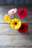 Bouquet of gerberas on the boards Stock Photos
