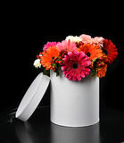 Bouquet of gerberas flowers in white modern vase jar on black Royalty Free Stock Photography