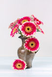 Bouquet of gerberas in a vase Royalty Free Stock Image