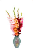 Bouquet of gladiolus Royalty Free Stock Images