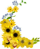 Bouquet with golden flowers illustration Stock Images