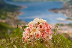 Bouquet on the grass Stock Photos