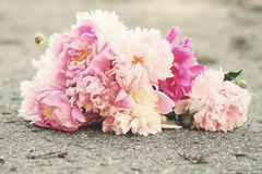Bouquet on the ground Stock Photo