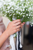 Bouquet of gypsophila Stock Photos