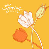 Bouquet of hand drawn outline tulip flowers on yellow background. Vector floral greeting card template and spring lettering. Stock Photography