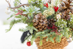 Bouquet has Christmas tree branches and artificial flowers. Royalty Free Stock Photography