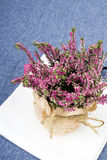 Bouquet of heather Royalty Free Stock Images