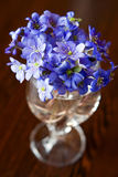 Bouquet Of Hepatics Royalty Free Stock Image