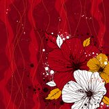 Bouquet of hibiscus, vector Stock Photography