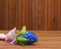 Bouquet from hyacinth flower Royalty Free Stock Images