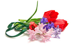 Bouquet of hyacinth with tulip Stock Images