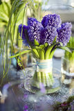 Bouquet of  hyacinth in vase of gl. Decoration of dining table.  bouquet of  hyacinth in vase of glass Stock Photos