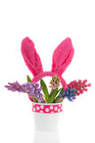 Bouquet Hyacinths with easter ears Stock Photo