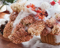 Bouquet from hydrangea, autumn leaves and snow. Stock Photography
