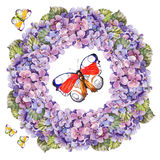 Bouquet hydrangea flower , butterflies garland watercolor Royalty Free Stock Image