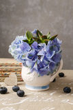 Bouquet of hydrangea macrophylla (hortensia) flowers in a white Stock Photos