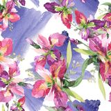 Bouquet with irises floral botanical flowers. Watercolor background illustration set. Seamless background pattern. Bouquet with irises botanical flowers. Wild vector illustration