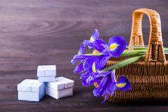 Bouquet of irises with gift boxes on dark wooden background Stock Photo