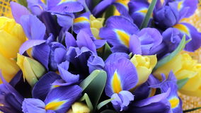Bouquet of irises with tulips. Beautiful bouquet of irises with tulips stock video
