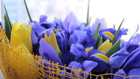 Bouquet of irises with tulips. Beautiful bouquet of irises with tulips stock footage